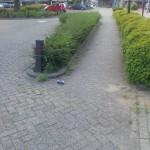 Trompetterstraat